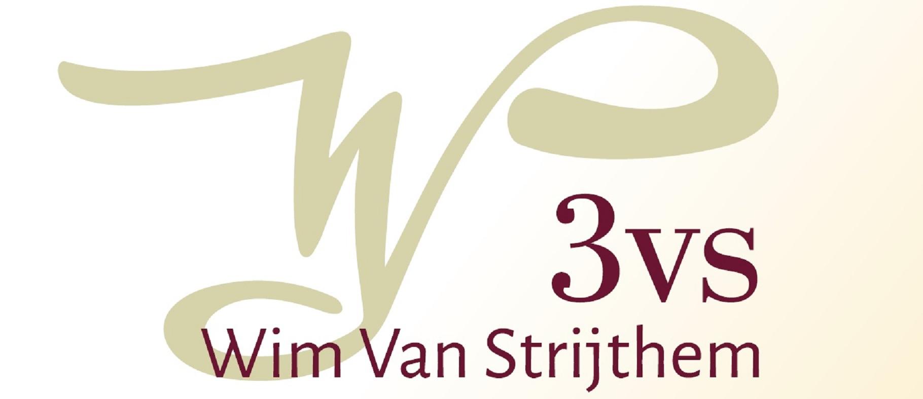 Logo 3VS WVS - grand